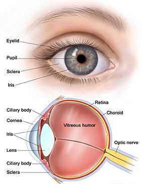 Cataract surgery in Kharghar Navi Mumbai